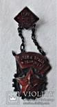 Знак Готов к труду и оброне ГТО ЦИК СССР ВСФК, 2 степень, копия, №0544, 1931 год, фото №3