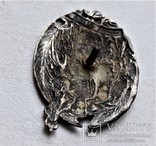 Знак Лейп-гвардии Волынского полка, ВЧК-ГПУ, Гончар, копия, 1917г, фото №8