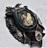 Знак ЧОНУ Части Особого назначения Украины, ВЧК-ГПУ, копия, №0034, 1918г, фото №10