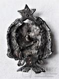 Знак 1е Советские кавалерийские Петроградские командные курсы, РККА, копия, 1920г, №043, фото №10