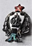 Знак 1е Советские кавалерийские Петроградские командные курсы, РККА, копия, 1920г, №043, фото №13