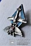 Знак Школа пилотов 9 ВВС РККА, СССР, копия, №447, фото №12