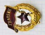 Военная гвардия в позолоте., фото №5