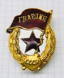 Военная гвардия в позолоте., фото №2