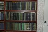 Толстой Л.Н. Полное собрание сочинений в 90 томах 1928г., фото №6