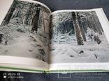 Большой альбом И.Шишкин, фото №12