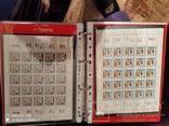 5 малых листов серии грибов 1964г марок СССР, фото №3