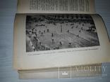 Иллюстрация в книге, журнале и газете 1931, фото №11