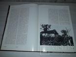 Довженко і світ Творчість О.П.Довженка 1984 тираж 6000, фото №5