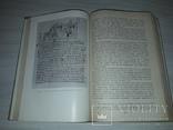 Історія української мови Київ 1979 Фонетика тираж 4400, фото №11
