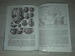 Первісна історія України 1999 Л.Л.Залізняк, фото №13