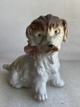 Статуэтка Собачка с бантиком Германия, фото №2