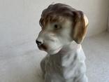 Статуэтка Собачка с бантиком Германия, фото №4