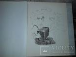 10 литографий А.Н. Якобсон 500 нумерованных экземпляров, фото №10