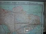 Карта етнічного складу населення України Київ 1966 В.І.Наулко, фото №11