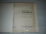 В.Сосюра Бібліографічний покажчик 1966 тираж 1100, фото №4