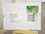 «Peterbilt 359»  холст/картон/акрил 35х25, 2020 г. фото 2