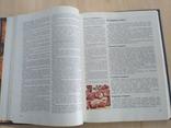 Книга о вкусной и здоровой пище 1986р., фото №11