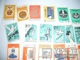 Спичечные этикетки,431 шт,целые серии,нулевые, фото №3
