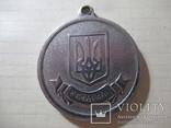 За успіхи в навчанні срібна шкільна медаль Україна, фото №4