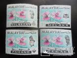 Флора. Малайзия. Штаты.  MNH, фото №3