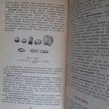 Матюхина Пищевые продукты Товароведение 1987р., фото №4