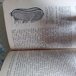 Матюхина Пищевые продукты Товароведение 1987р., фото №5