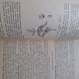 Матюхина Пищевые продукты Товароведение 1987р., фото №6