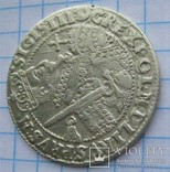 Орт Сигизмунд III 1623, фото №5