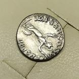 Монета Домициан, фото №9