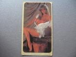 Вкладыш- наклейка девушка ню., фото №2