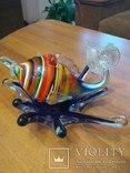 Рыба стекляная, фото №4