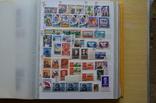 Коллекция марок - 50 кляссеров, фото №5
