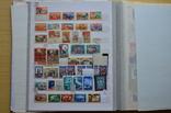 Коллекция марок - 50 кляссеров, фото №6