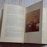 Современная болгарськая кухня 1966 г, фото №10