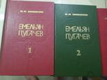 Шишков Емельян Пугачев, фото №4