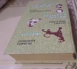 Сказки : малыш и карлсон . мавгли . винипух ., фото №6