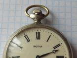 Карманные часы Молния. Волки., фото №3