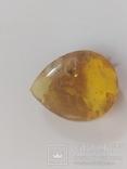 Янтарь натуральный 4.6 грамм с застывшей мошкой-инклюзив., фото №4