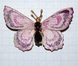 Брошь времен СССР, бабочка, вставка аметист, золочение - 3х5 см., фото №10