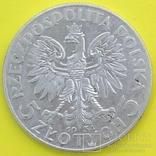 5 Злотих 1934р. Срібло., фото №3