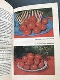 1988 Овощи Фрукты Виноград. Хранение и переработка, фото №5