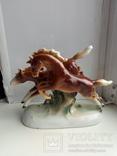 Лошади, фото №2