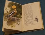Комплект книг 10 шт., фото №6
