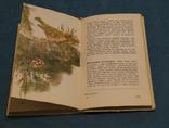 Комплект книг 10 шт., фото №8