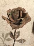 «Роза Мерцалова», фото №9