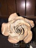 «Роза Мерцалова», фото №11
