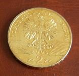 Польша 2 злотых 2005 года Филин Пугач, фото №3