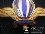 Знак СССР, фото №10
