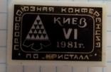 Профсоюзная конференция ПО КРИСТАЛЛ 1981 г., фото №3